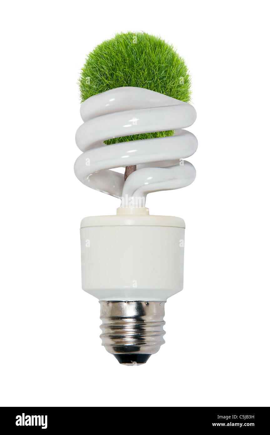 Replenish resources shown by a tree growing from spiral light bulb - Stock Image