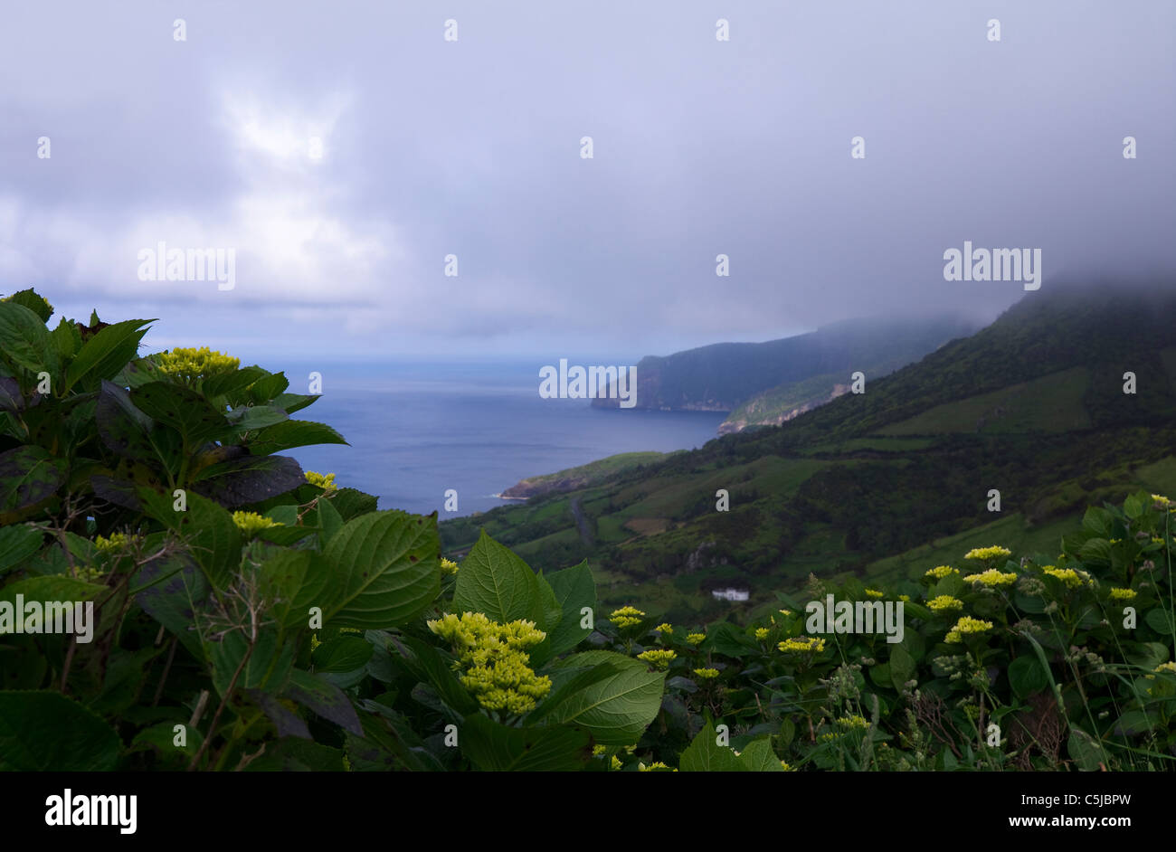 Mystical landscape at Flores Island, Azores - Stock Image