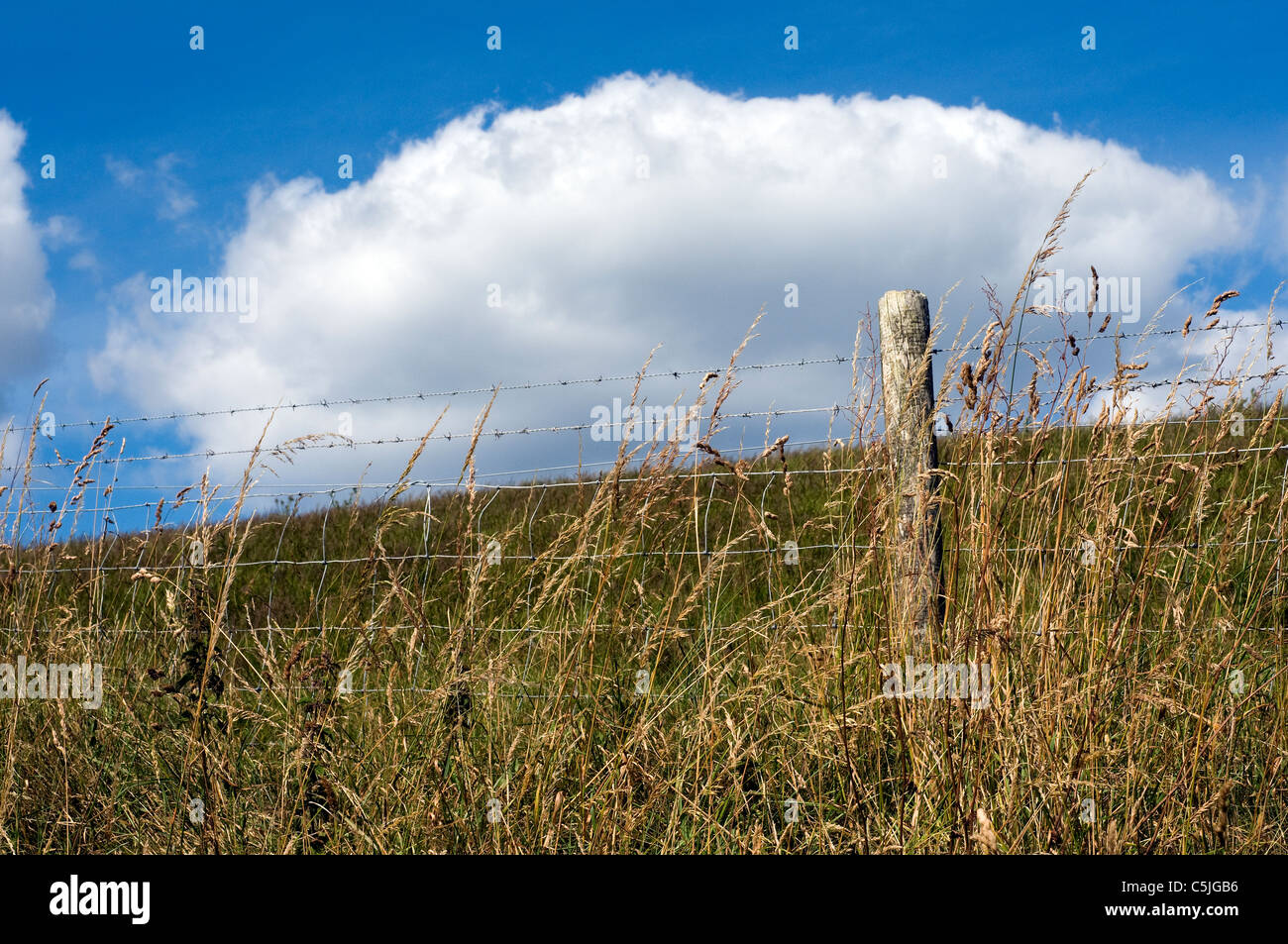 Fence post and cloud,misc, fence, farming, keep, out, private,get of my land,farming - Stock Image