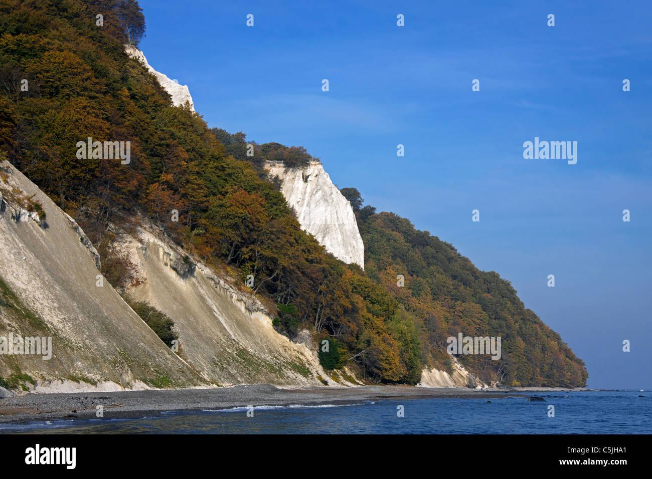 Chalk cliffs at Koenigsstuhl / Königsstuhl, Jasmund National Park, island of Ruegen, Mecklenburg-Western Pomerania, Stock Photo