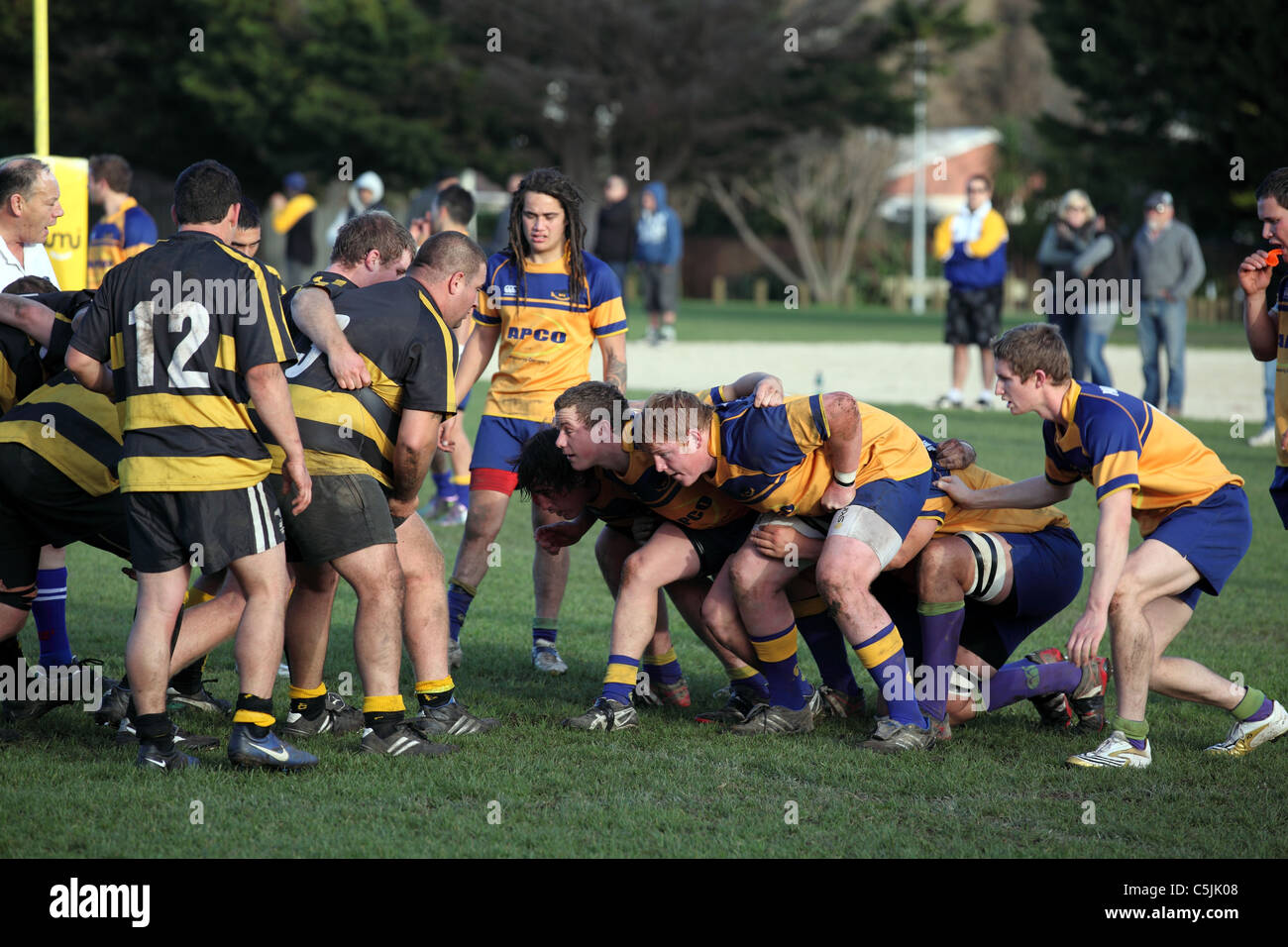 Packing down for a scrum in premier rugby game. Paraparaumu, Kapiti, Wellington, New Zealand, Australasia - Stock Image