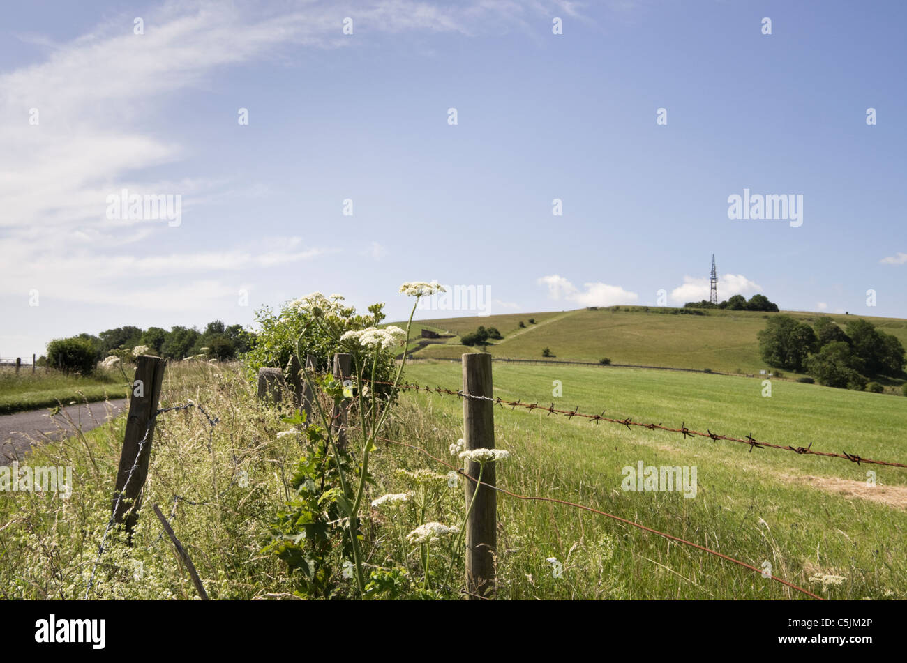 National Wire | Field With Barbed Wire Fence In South Downs National Park With View