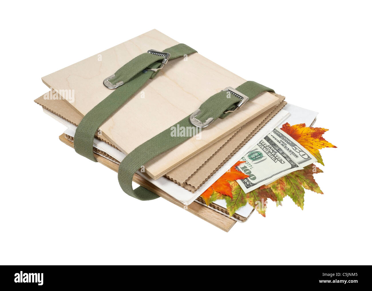 Preserving the greens shown by money and leaves in a flower press - path included - Stock Image