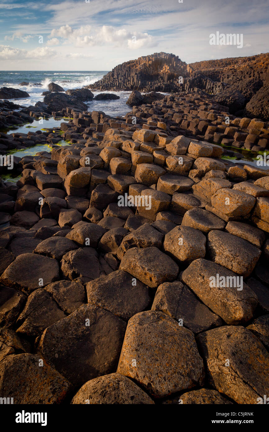 The Giant's Causeway on the northeast coast of Northern Ireland - Stock Image