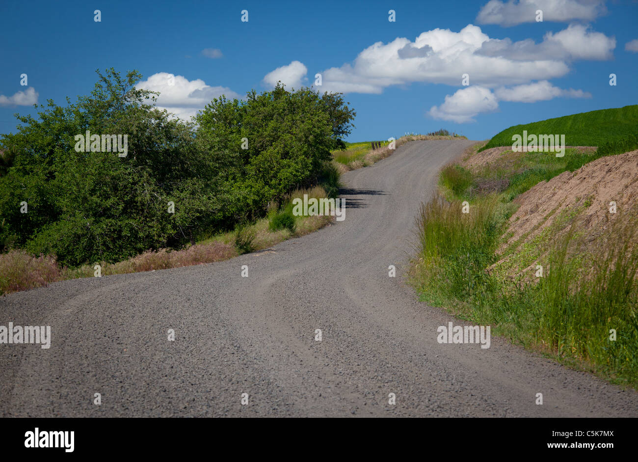 Country road in the Palouse - Stock Image