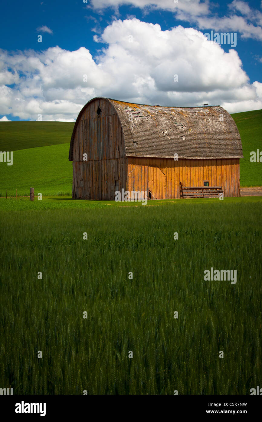 Barn building in the agricultural Palouse area of eastern Washington state. - Stock Image