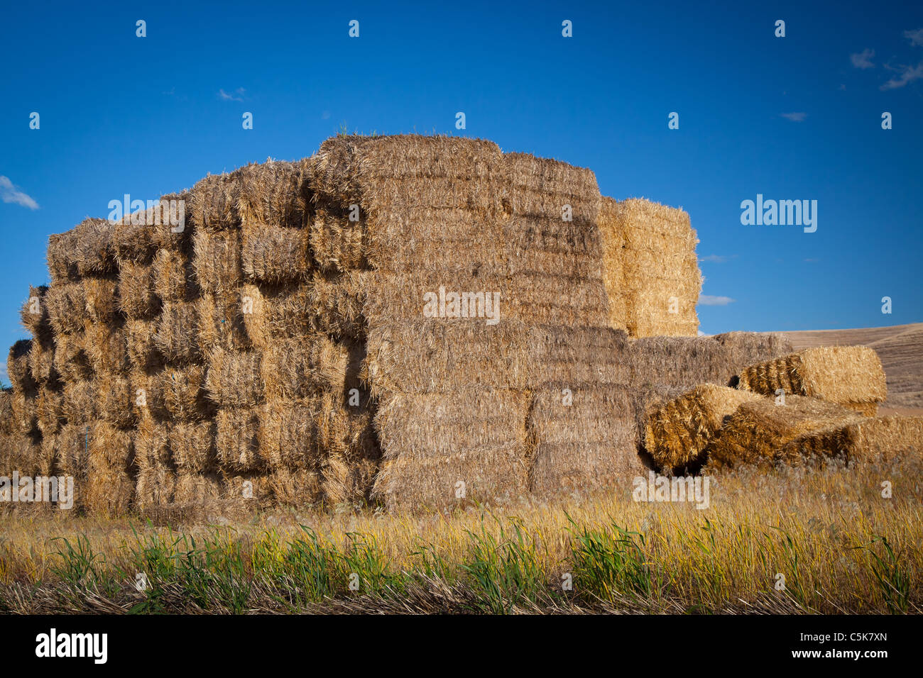 Hay bales near the town of Palouse in the agricultural area of The Palouse in eastern Washington state. - Stock Image