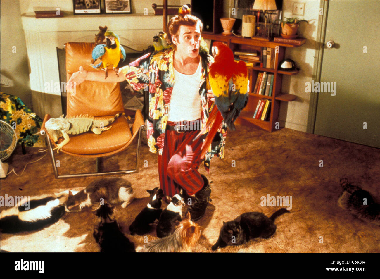 Ace Ventura: Pet Detective Year: 1994 USA Jim Carrey