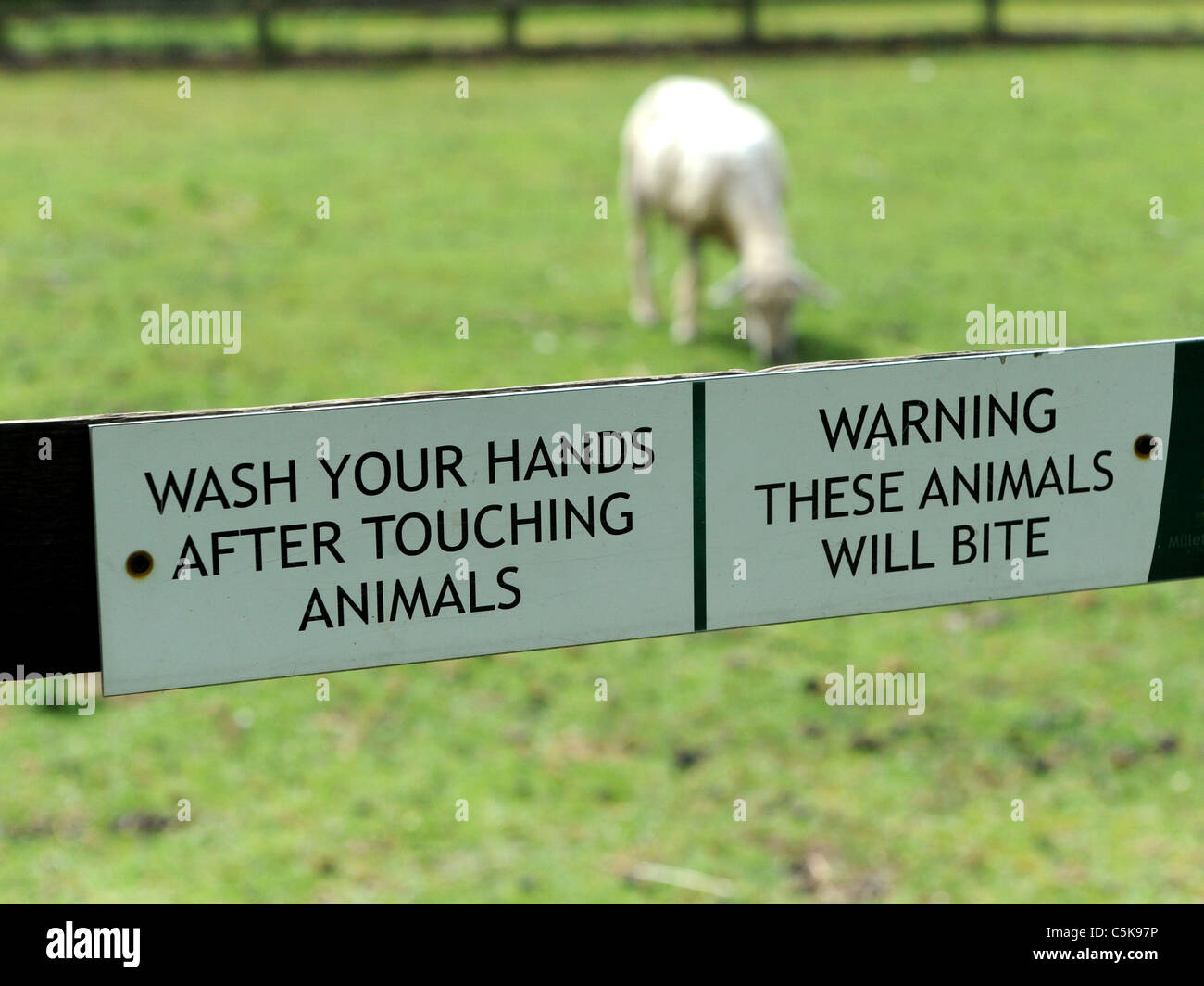 Warning sign wash your hands after touching animals, these animals bite. - Stock Image