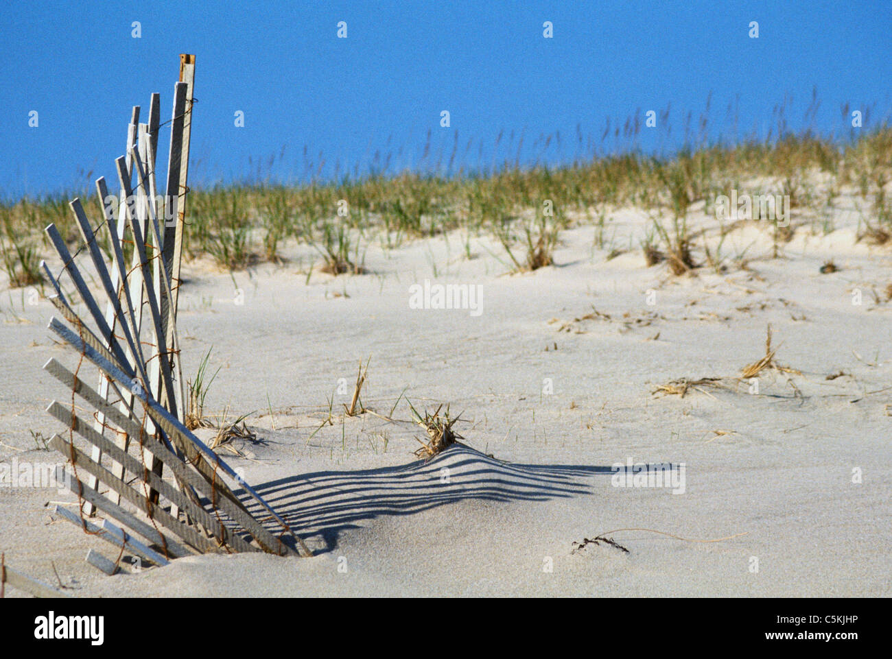 snow fencing, South beach, MA Stock Photo