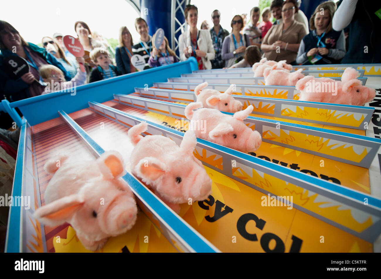 The 15000 strong crowd enjoys the RSPCA pig race, music and free ice cream. Ben and Jerry's Sundae festival - Stock Image