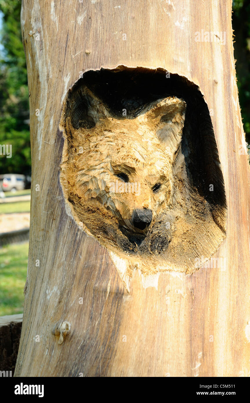 Wood carving of a Fox from a tree stump - Stock Image