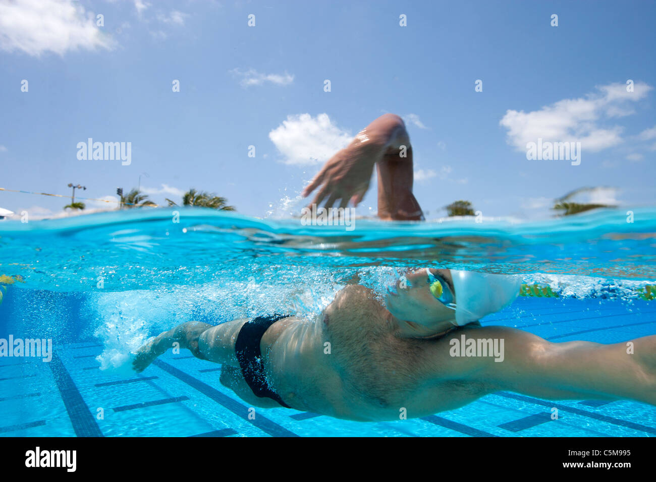 Milorad (Mike) Cavic, European champion (2007) in the 50-meter butterfly is photographed on location at Founder's - Stock Image
