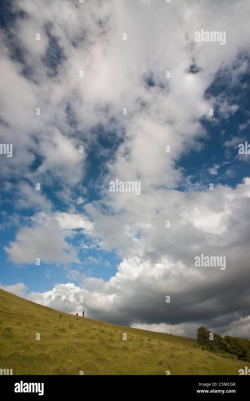 Walking on Collard Hill during the Large Blue season - Stock Image