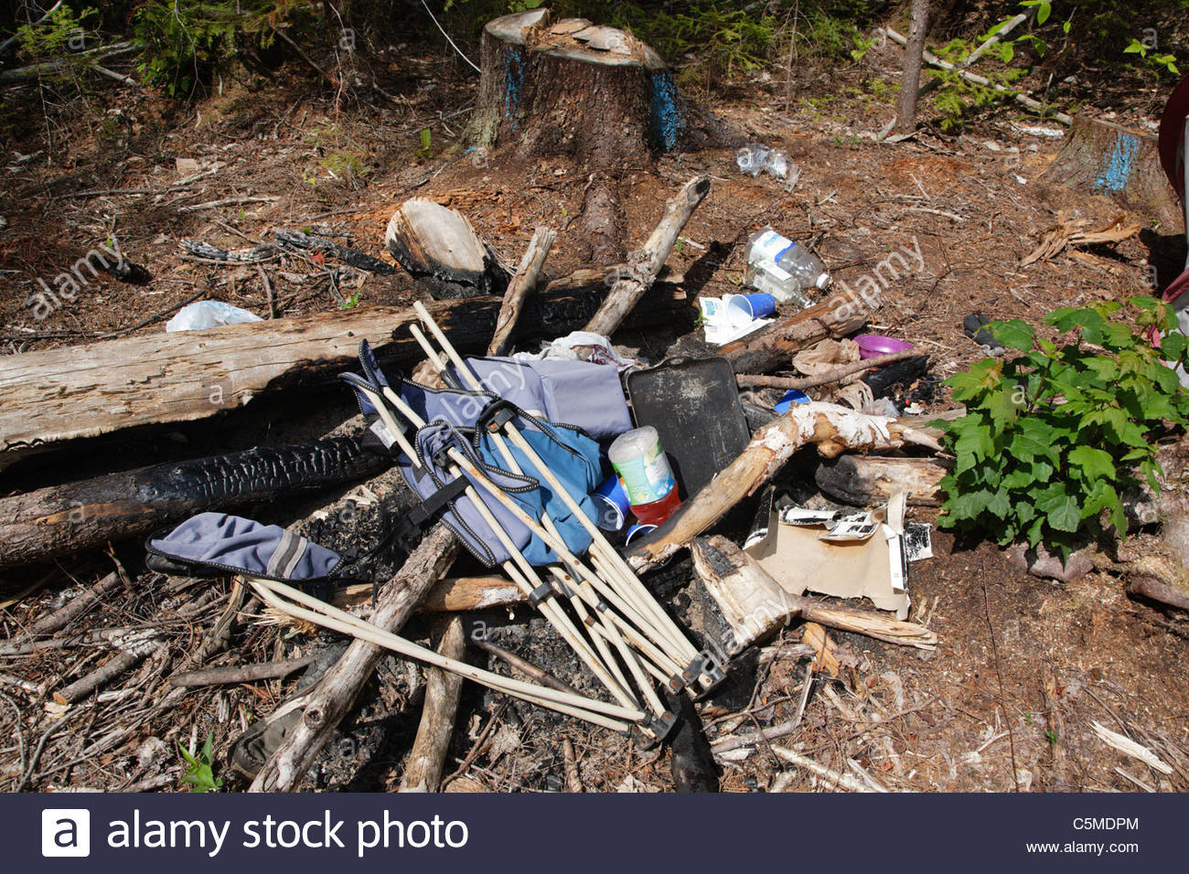 Poor leave no trace ethics - Abandoned campsite in the White Mountain National Forest of New Hampshire - Stock Image