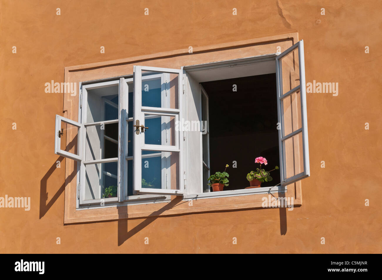Flowerpot On A Windowsill Blumentopf Am Fensterbrett Stock Photo