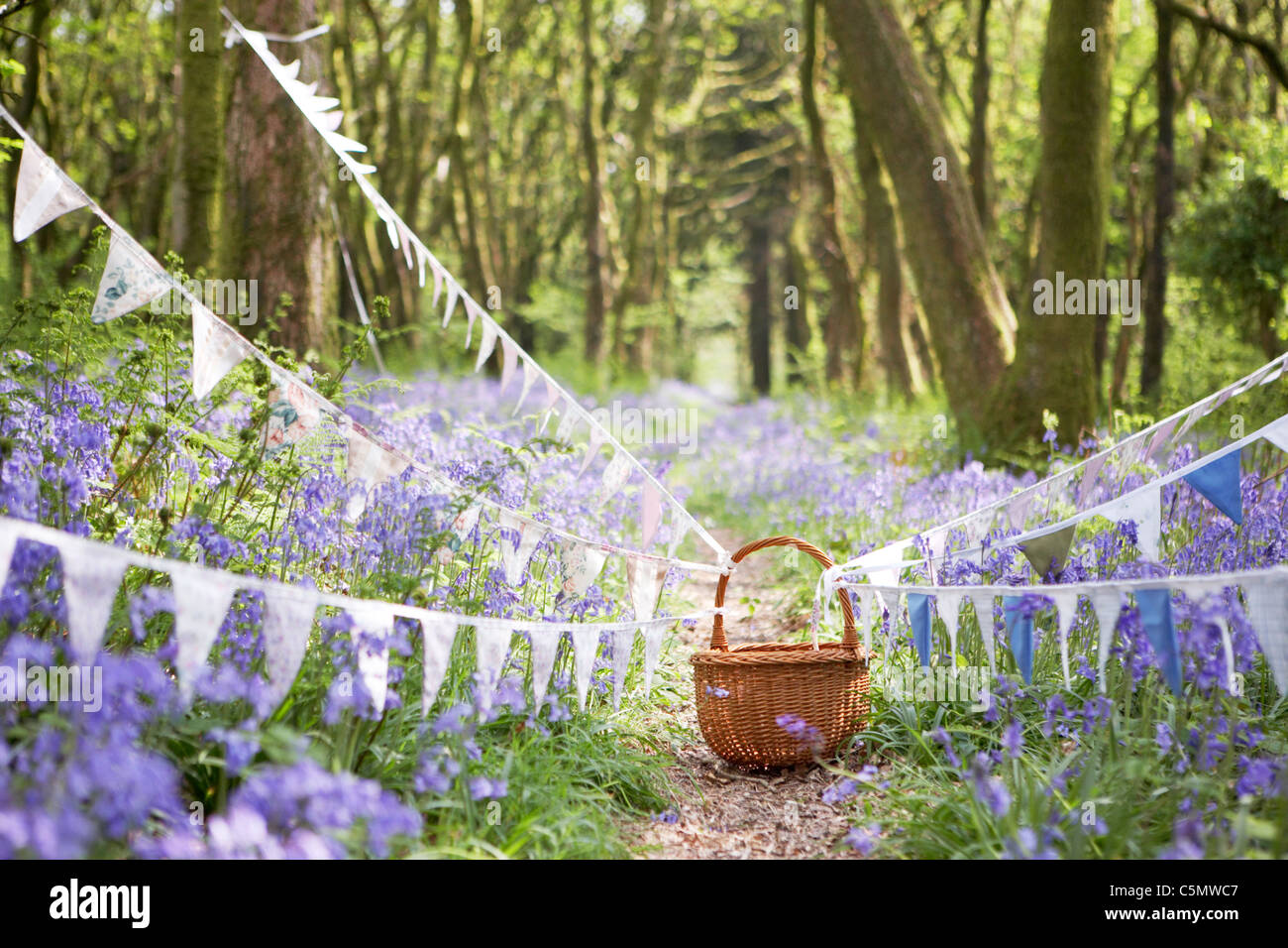 Vintage bunting and wicker basket along a path in Dorset springtime bluebell woodland, England, UKStock Photo