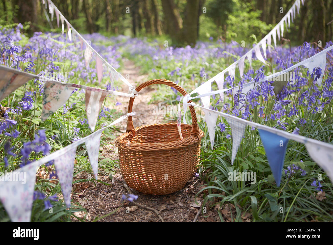 Vintage bunting in Dorset bluebell woodland, England, UK - Stock Image
