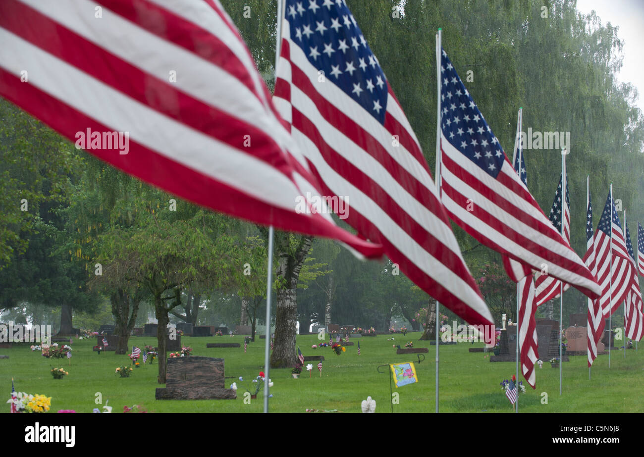 series of american flags framing park-like cemetary Stock Photo ...