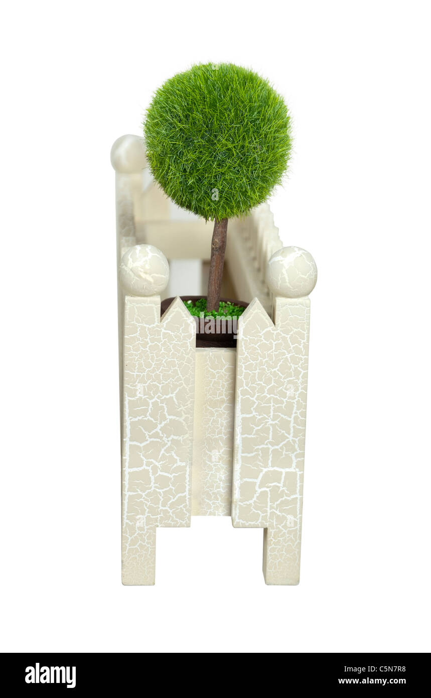Miniature forest consisting of a potted tree in a fenced yard - path included - Stock Image