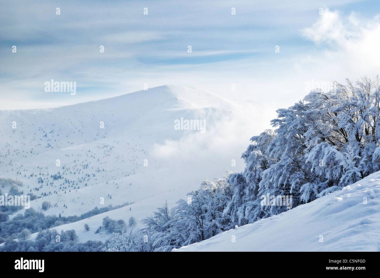 Snowy mountain top upon cloudy sky. Carpathian Mountains - Stock Image