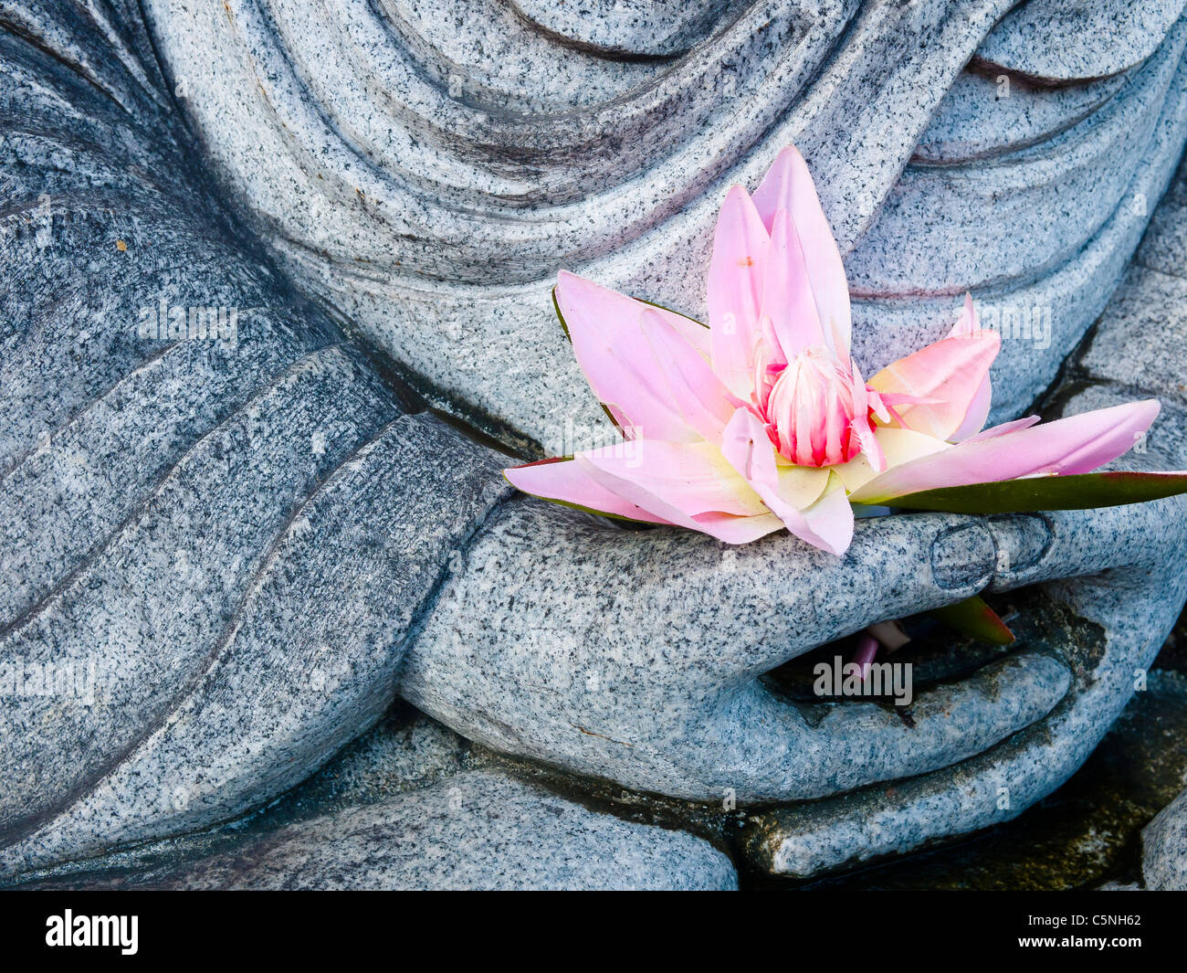 Buddha lotus flower stock photos buddha lotus flower stock images buddha image statue hand holding pink lotus flower stock image izmirmasajfo