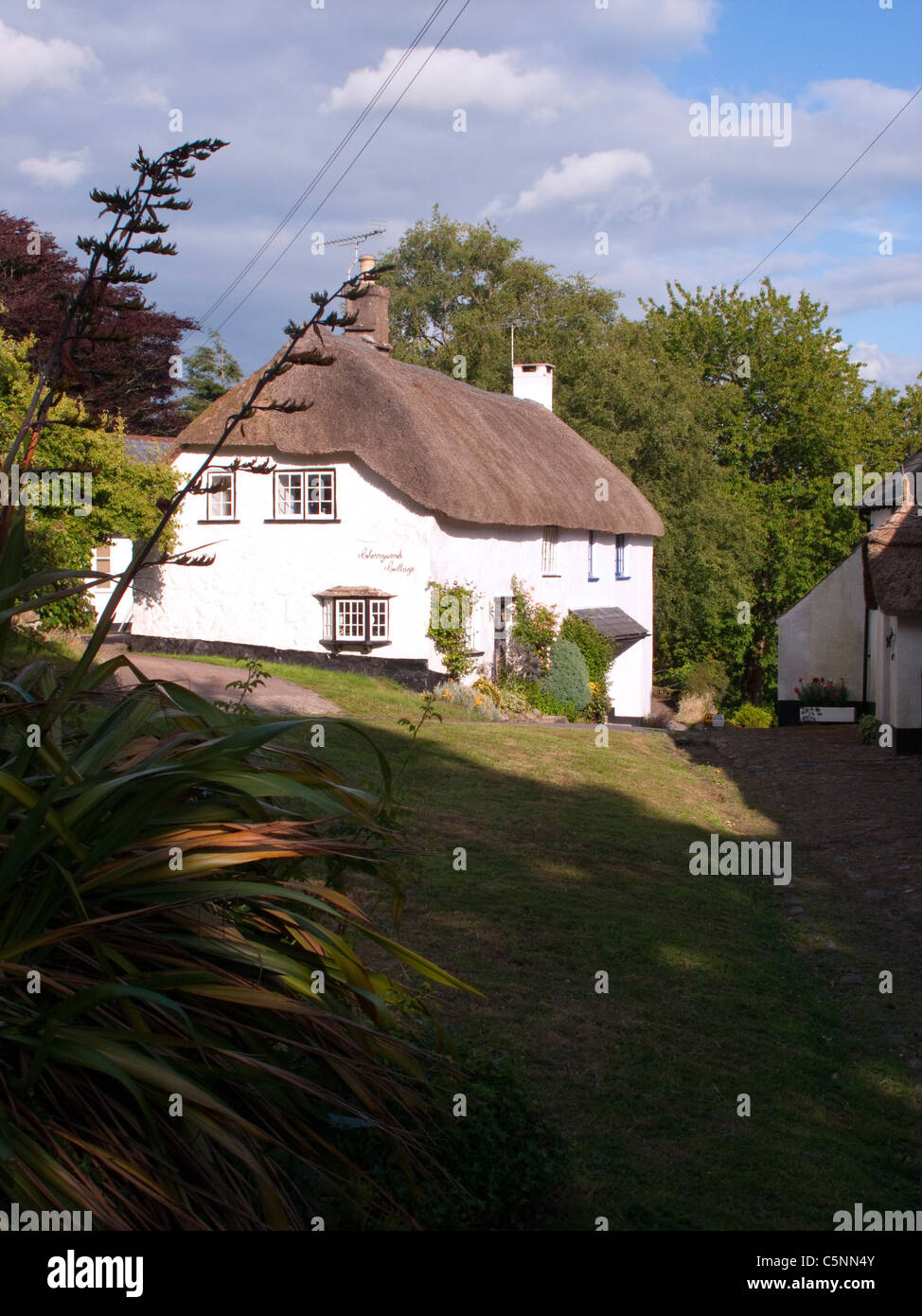 Traditional thatched cottage, North Bovey, Dartmoor, Devon, England, UK, - Stock Image