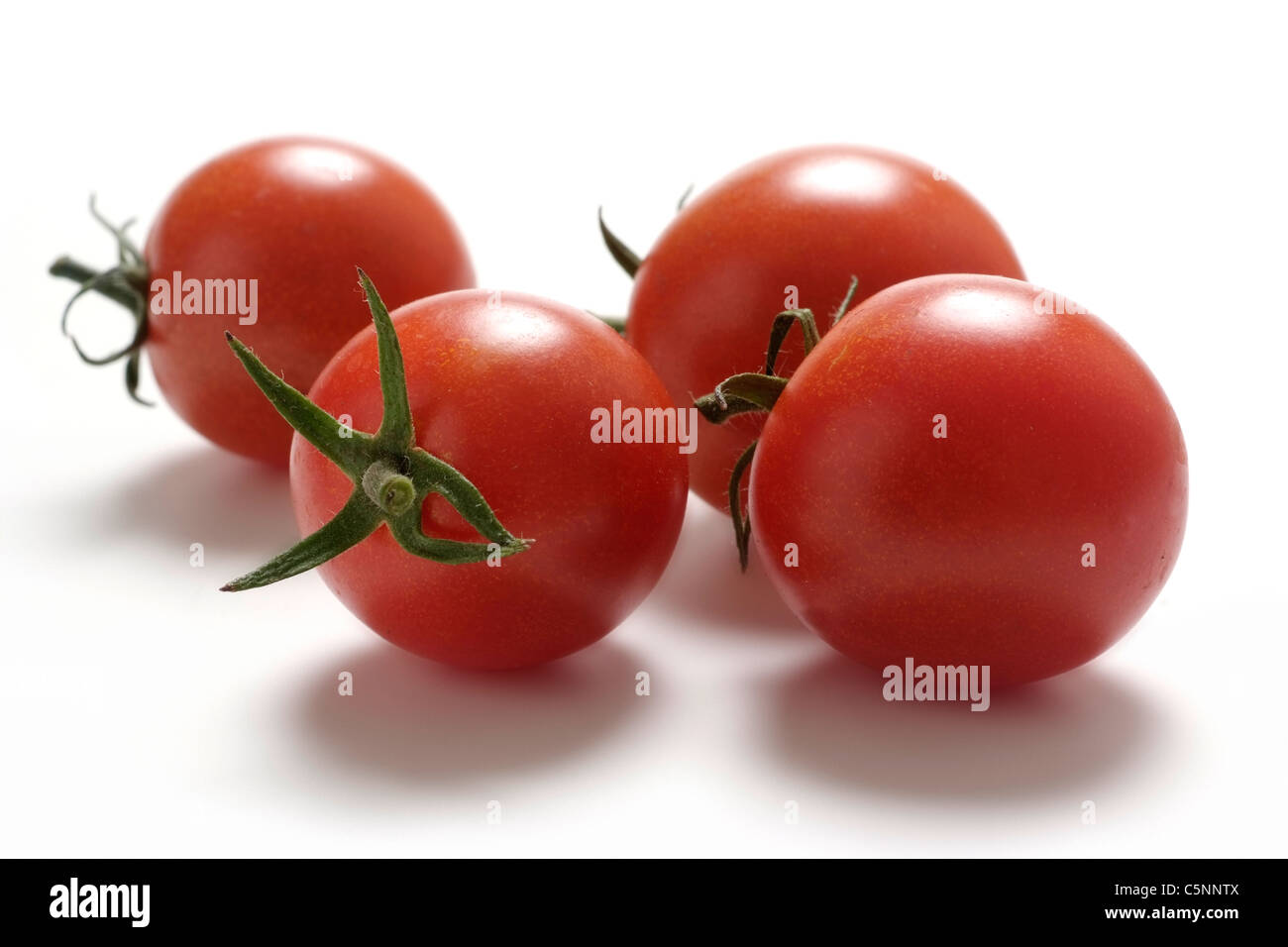 Tomato varieties: Dolce Vita - Stock Image