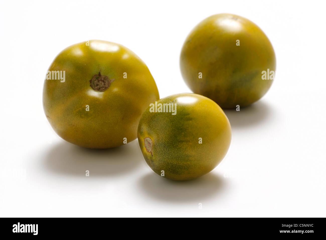 Tomato varieties:  Lime Green - Stock Image