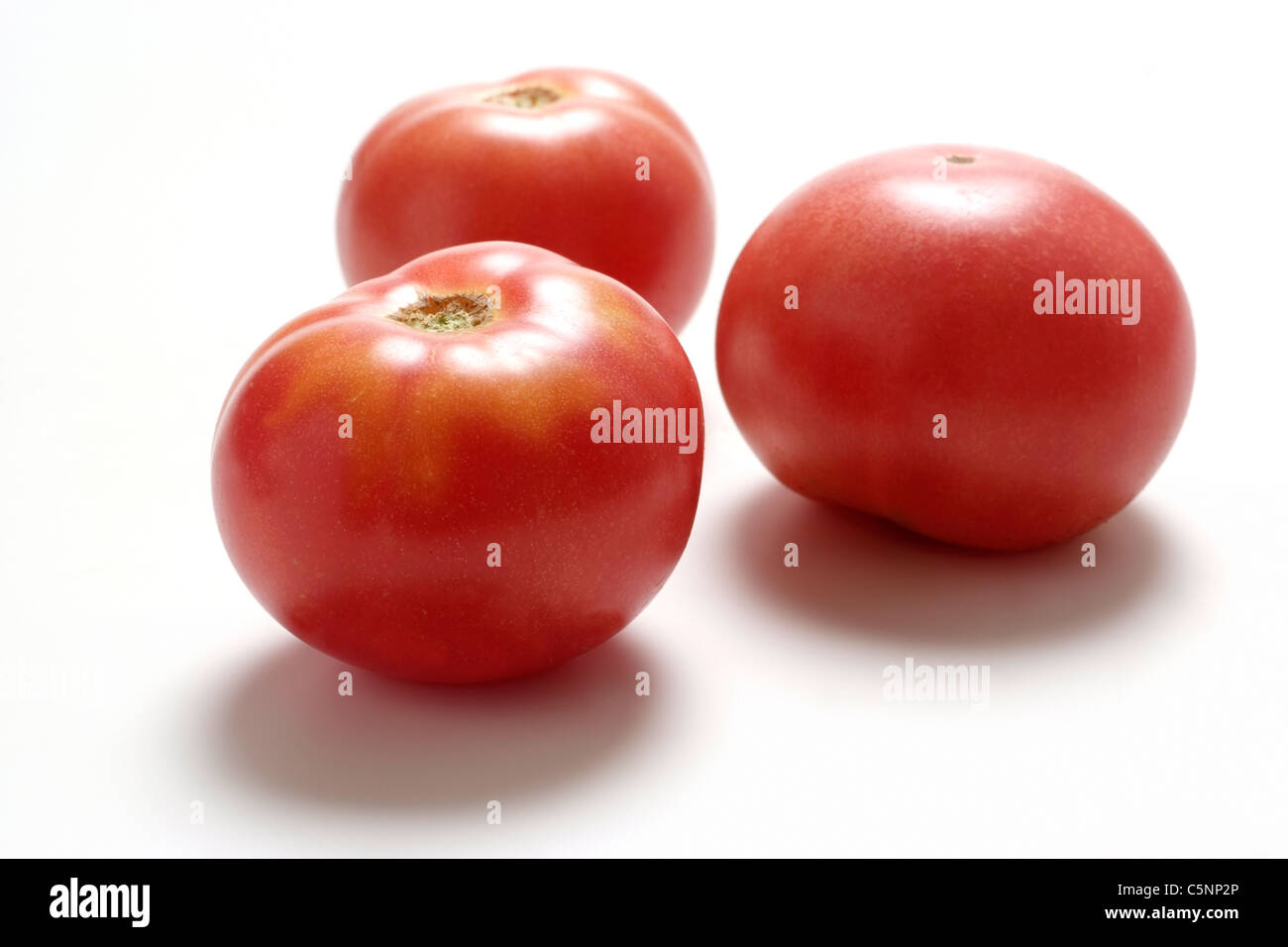 Tomato varieties: Red russian tomato - Stock Image