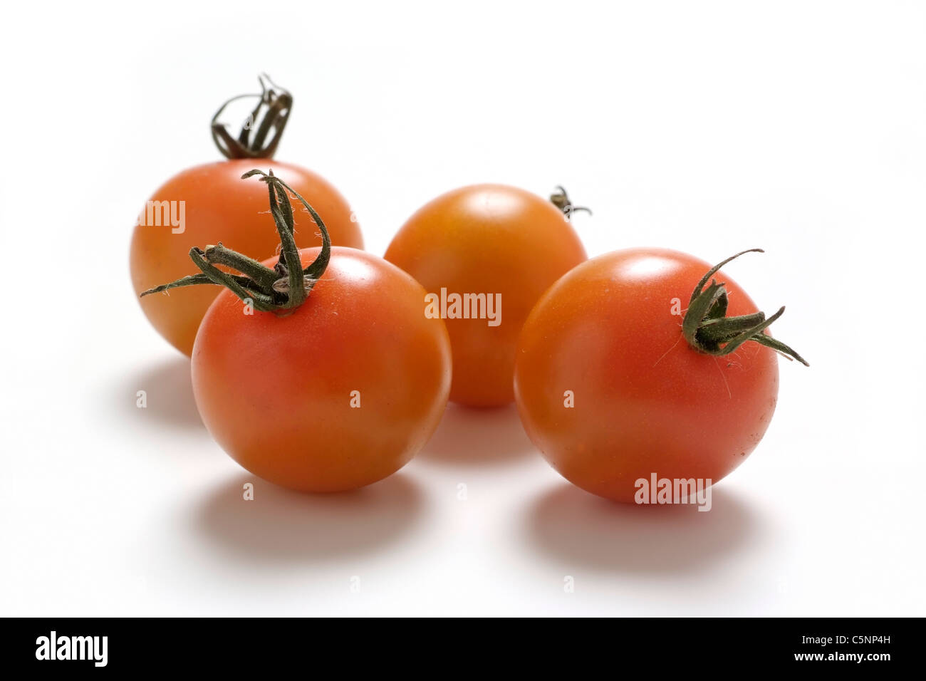 Tomato varieties: Sungella - Stock Image
