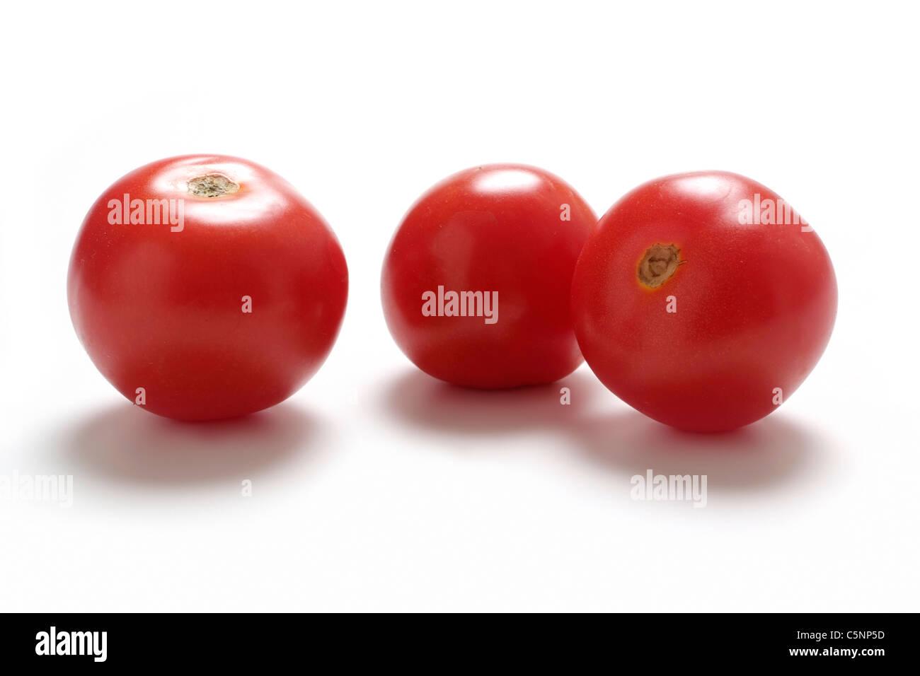 Tomato varieties: Wladiwostock - Stock Image