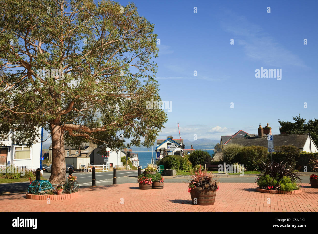 Block paved square with flower tubs in Welsh seaside town. Y Maes, Criccieth, Llyn Peninsula, Gwynedd, North Wales, - Stock Image