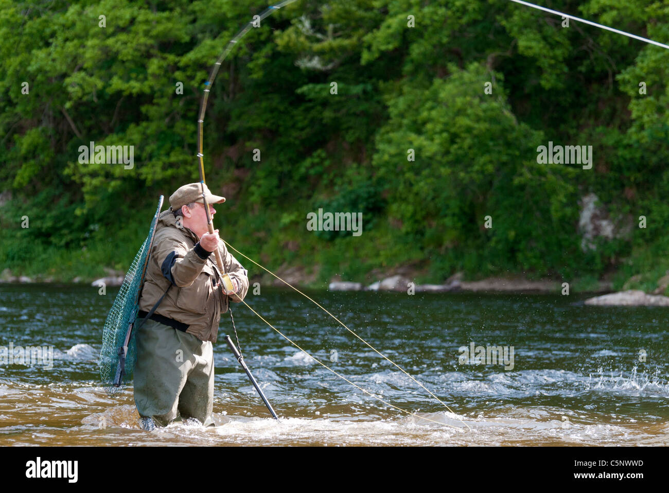 Fisherman fly fishing for salmon on River Tweed, Scottish Borders, Scotland - Stock Image