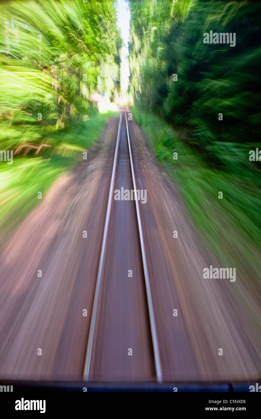 View of narrow gauge railroad track from rear window of train riding through forest - Stock Image