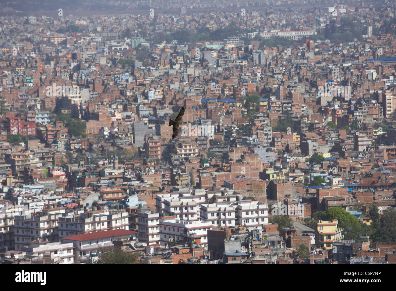 Kite flying over the urban sprawl of Kathmandu, Nepal, Asia - Stock Image
