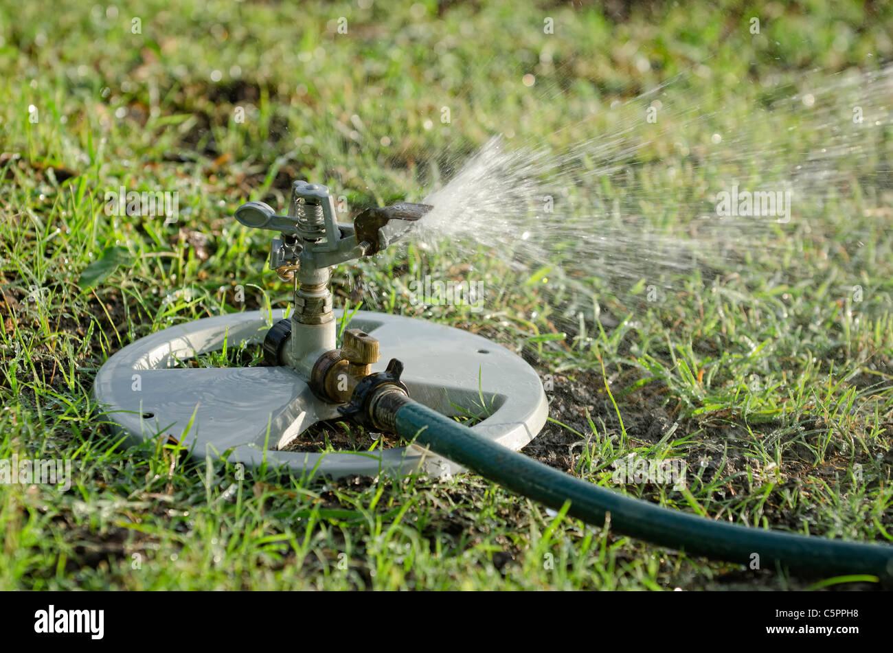 Garden Sprinkler - Stock Image