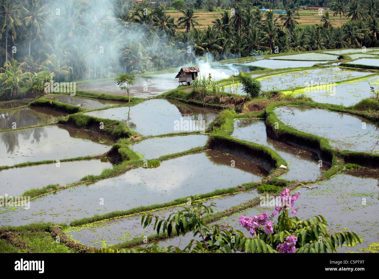 Bali, Indonesia - Stock Image