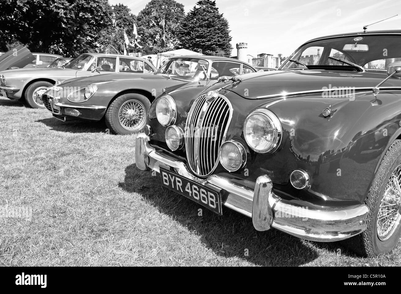 A black and white study of a row of classic jaguar saloon and sports cars Stock Photo
