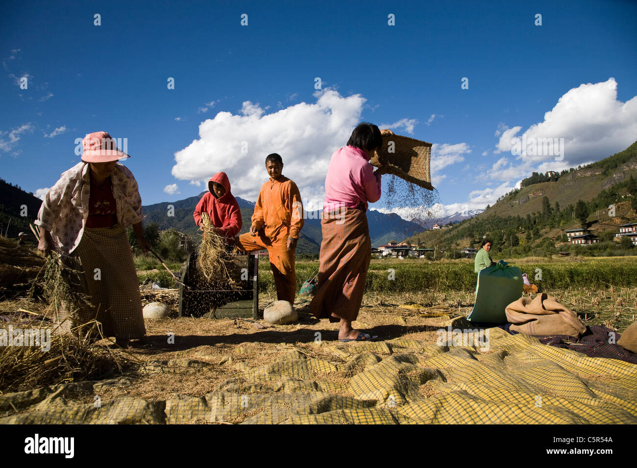 Local peasants working in fields on a pleasant day in Paro, Bhutan. - Stock Image
