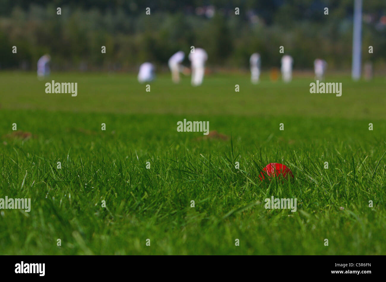 Amateur Cricket Game, Played in Walferdange (Luxembourg) on 03/09/10 - Stock Image