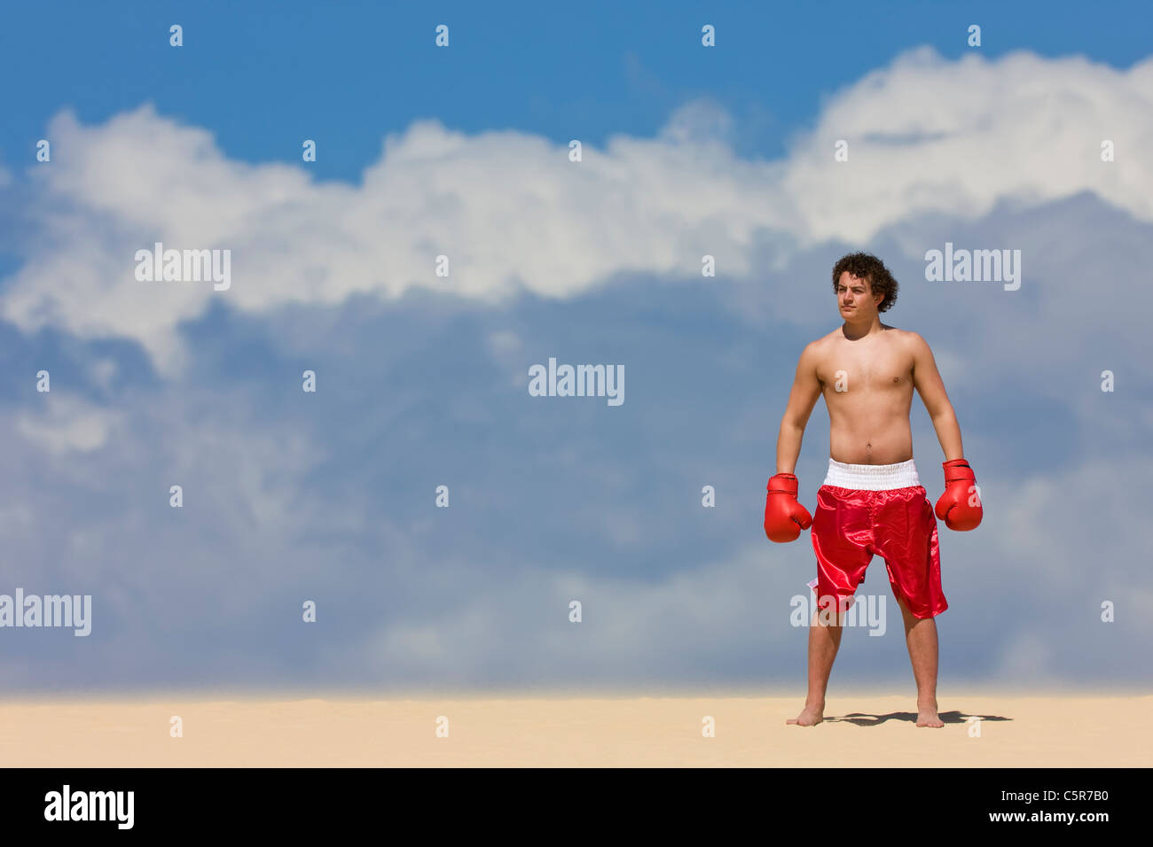 Boxer standing on top of the World. - Stock Image