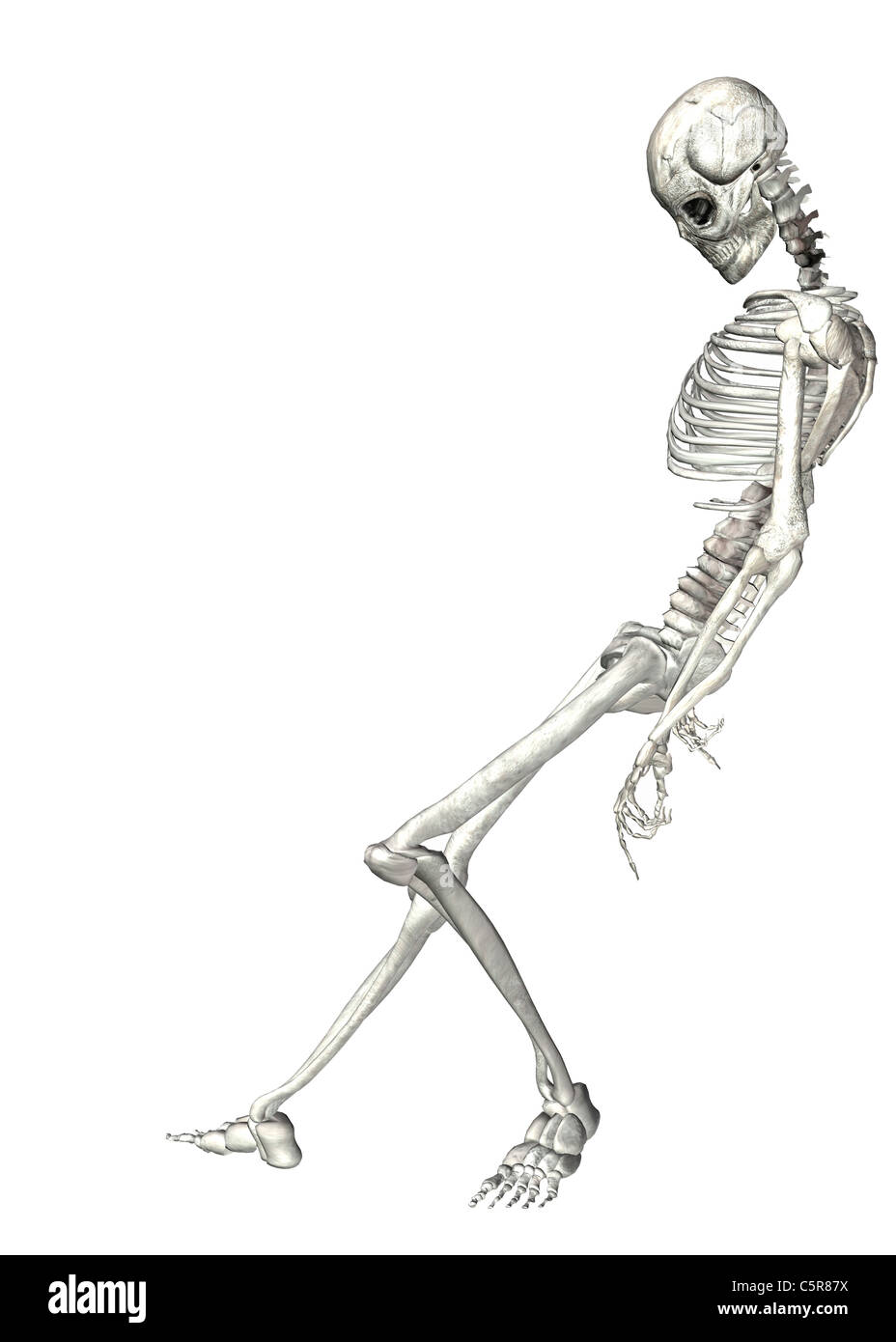 Illustration of a Skeleton leaning against something on a white ...