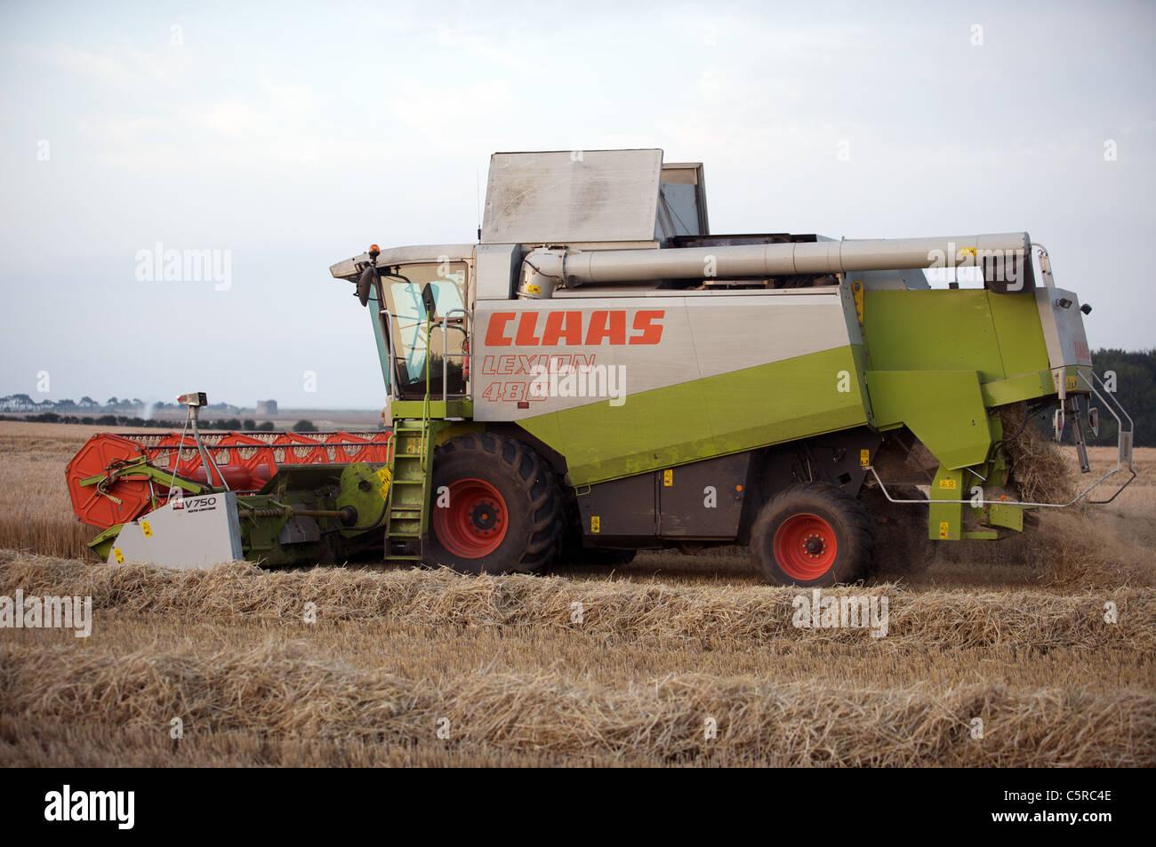 Class Lexion 480 combine harvester - Stock Image