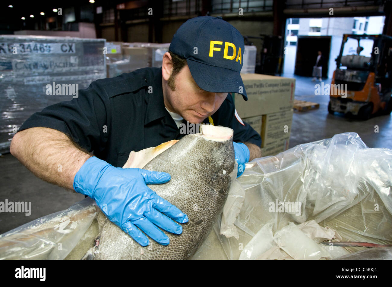 FDA field inspectors check shipments of imported seafood at the Los Angeles International Airport. - Stock Image