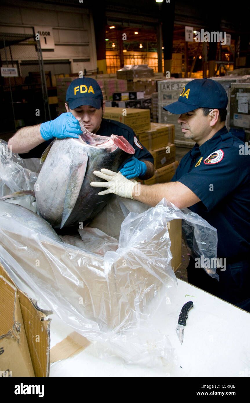 FDA field inspectors check shipments of imported seafood at the Los Angeles International Airport - Stock Image