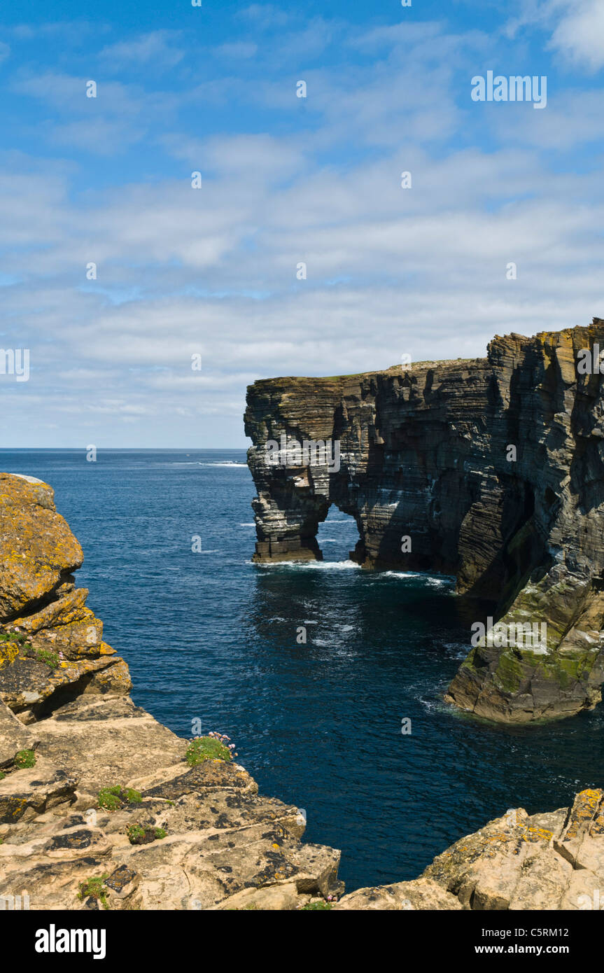 dh Scabra Head ROUSAY ORKNEY Rousay seacliffs and natural sea arch - Stock Image