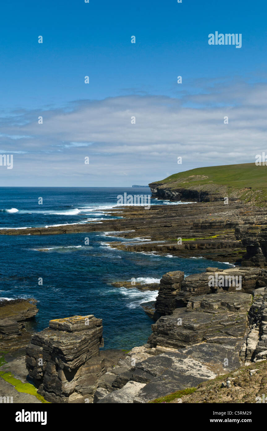 dh  ROUSAY ORKNEY Rousay north coast sea cliffs and sea stacks - Stock Image