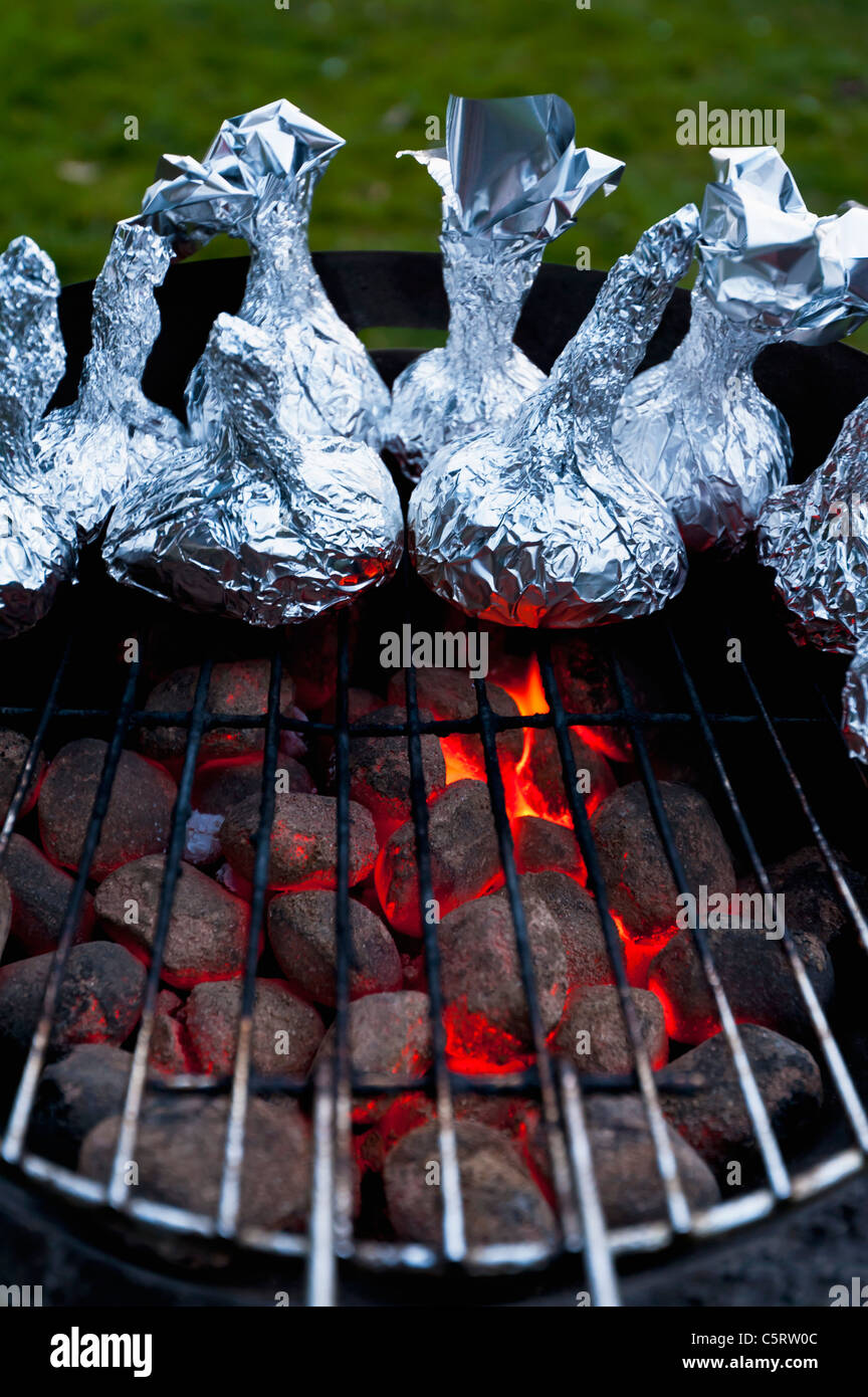 Germany, North Rhine-Westphalia, Düsseldorf, Close up of onions in aluminium foil on grill - Stock Image