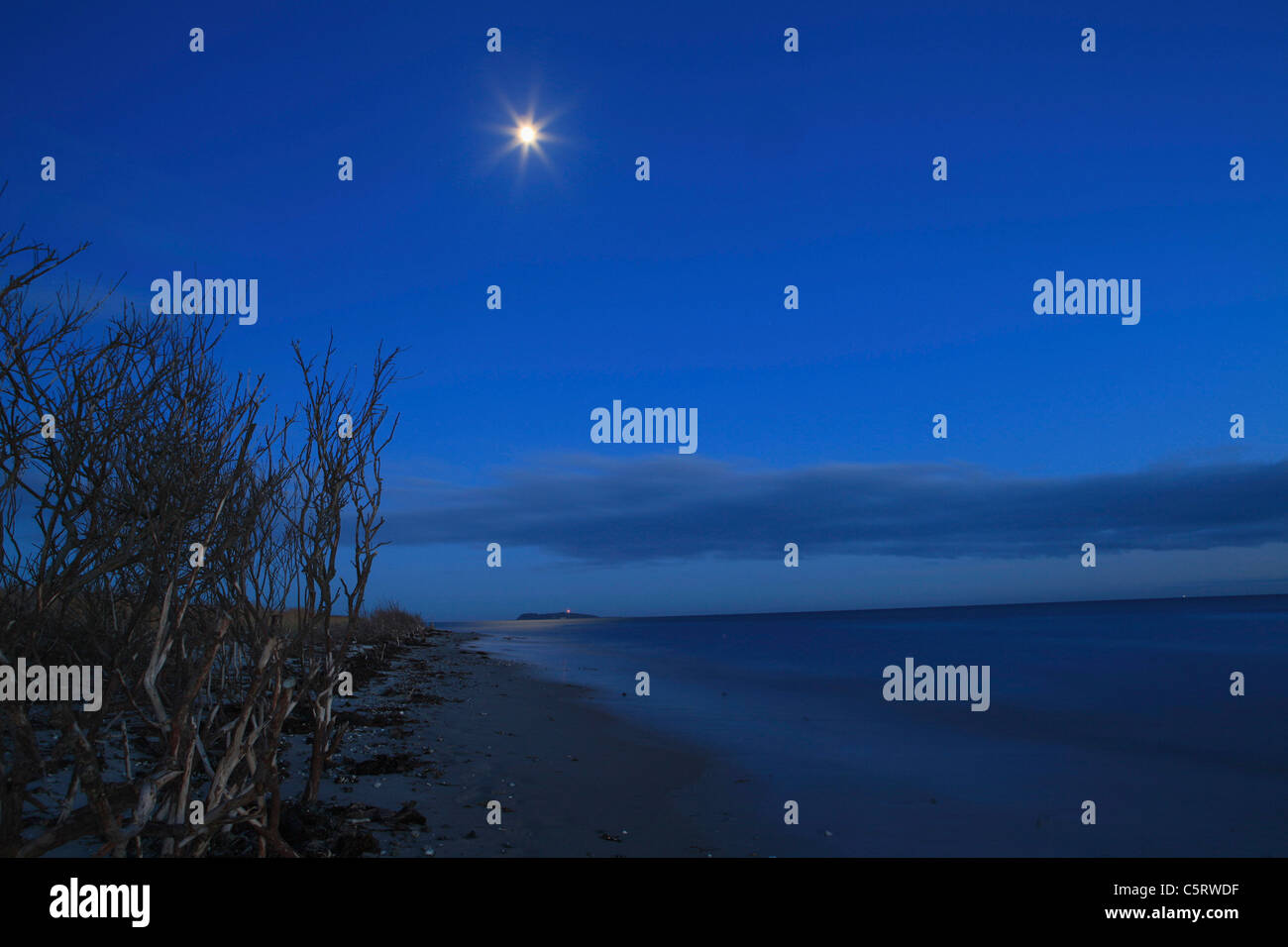 Denmark, Kattegat, Ebeltoft, Baltic Sea, View of beach near sea with moon at night - Stock Image